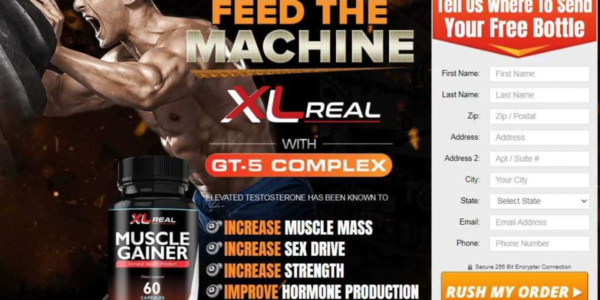 Where To Buy XL Real Muscle Gainer?