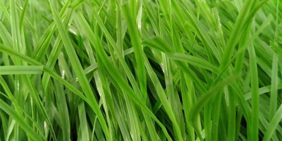 Benefits of Plastic Grass on Premises and Grass Court Lawns
