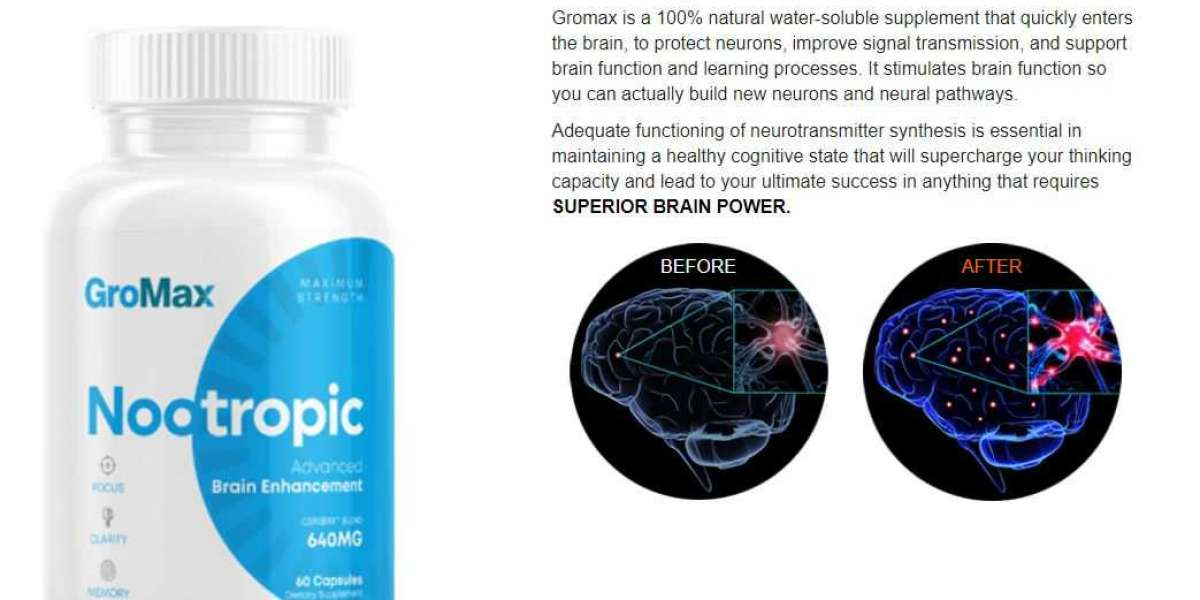 GroMax Nootropic Reviews – Hoax Or Real Product?